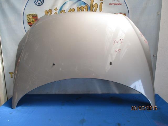 peugeot 307 cofano grigio argento